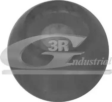 3RG 24719 - Втулка, шток вилки перемикання передач autocars.com.ua