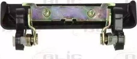 BLIC 601018007402P - Ручка двери avtokuzovplus.com.ua