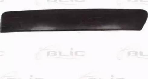 BLIC 6502072533924P - Облицовка / защитная накладка, буфер avtokuzovplus.com.ua