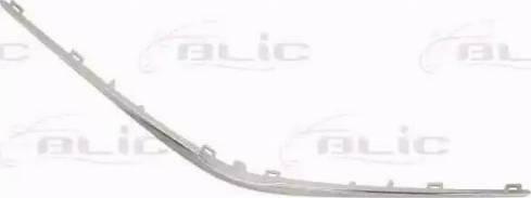 BLIC 6502-07-8156211Q - Облицювання / захисна накладка, облицювання радіатора autocars.com.ua