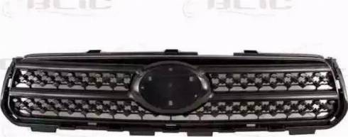 BLIC 6502-07-8179990P - Решітка радіатора autocars.com.ua