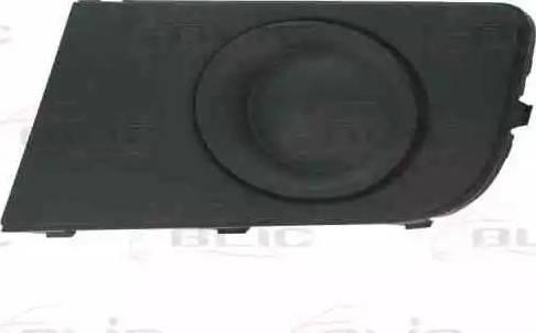 BLIC 6502-07-9595915P - Решітка вентилятора, буфер autocars.com.ua