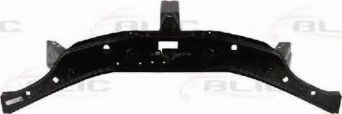 BLIC 6502-08-1302200P - Облицювання передка autocars.com.ua