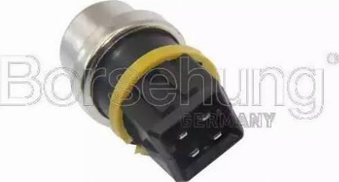 Borsehung B13134 - Датчик, температура охлаждающей жидкости car-mod.com