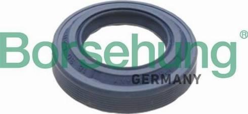 Borsehung B17828 - Уплотняющее кольцо, дифференциал car-mod.com