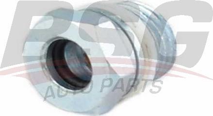 BSG BSG30725048 - Гидравлический шланг, рулевое управление avtokuzovplus.com.ua