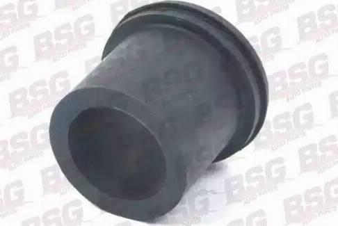 BSG BSG 60-700-070 - Втулка, листовая рессора autodnr.net