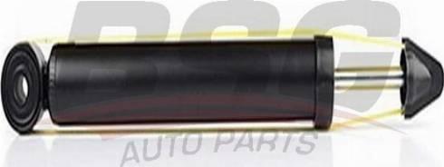 BSG BSG 90-300-010 - Амортизатор car-mod.com