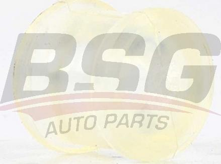 BSG BSG 90-465-001 - Втулка, шток вилки перемикання передач autocars.com.ua