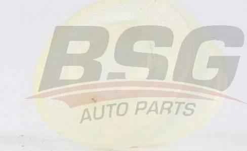 BSG BSG 90-465-004 - Втулка, шток вилки переключения передач car-mod.com