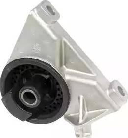Delphi TEM010 - Подушка, підвіска двигуна autocars.com.ua