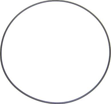 Elring 803.881 - Уплотнительное кольцо, гильза цилиндра car-mod.com