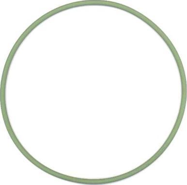 Elring 825751 - Уплотнительное кольцо, гильза цилиндра car-mod.com