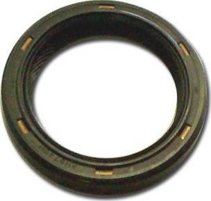 Elwis Royal 8438819 - Уплотняющее кольцо, коленчатый вал autodnr.net