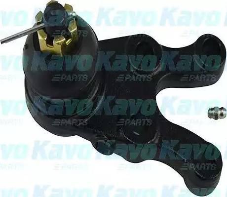 Kavo Parts SBJ-5507 - Шаровая опора, несущий / направляющий шарнир car-mod.com
