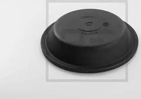 PE Automotive 076.407-10A - Мембрана, цилиндр пружинного энерго-аккумулятора car-mod.com