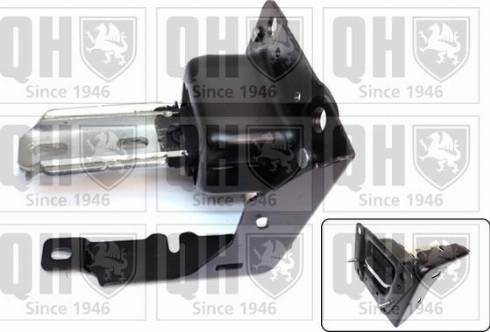 Quinton Hazell EM4751 - Подушка, підвіска двигуна autocars.com.ua
