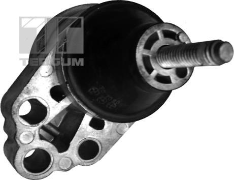 Tedgum 00226305 - Подушка, підвіска двигуна autocars.com.ua